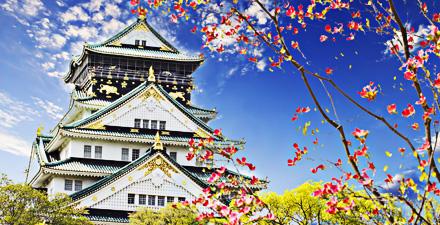 Alla scoperta del Giappone 2017