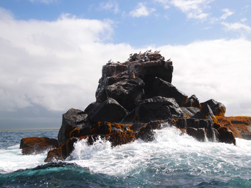 Isole Ballestas