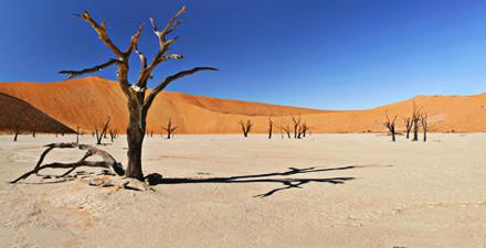 Cieli & Terre di Namibia