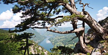Serbia, fra spiritualità e misticismo