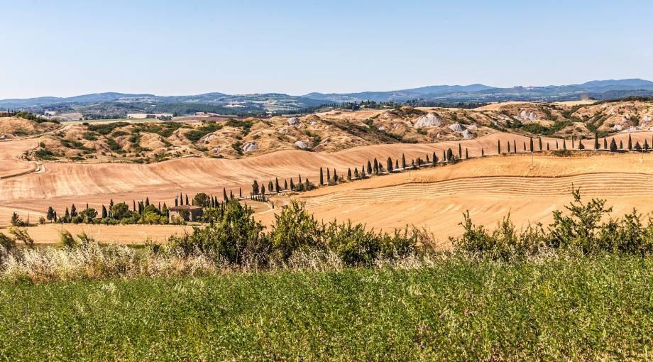 TOUR DI GRUPPO - CHIANTI E CRETE SENESI - GARANTITO